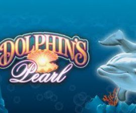Dolphins pearl a