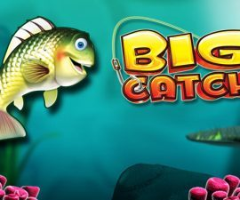 Big catch logo