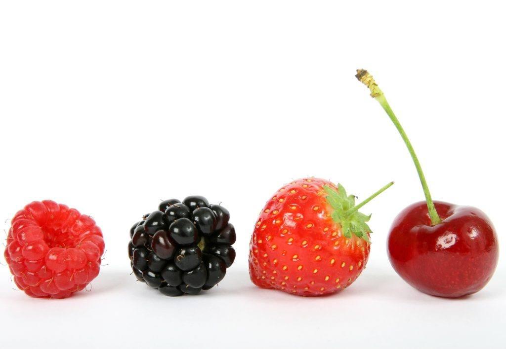 Casumo slot fruit